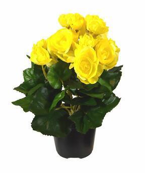 Konstgjord växt Begonia gul 25 cm