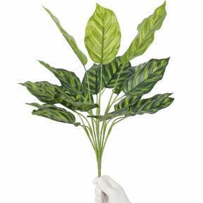 Kalatea konstgjord växt 50 cm