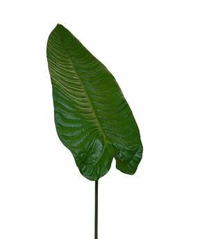 Konstgjord blad Tilldelning 165 cm