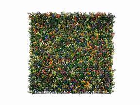 Konstgjord blomsterpanel Buxus mångfärgad - 50x50 cm