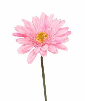 Konstgjord Gerbera blomma rosa 60 cm