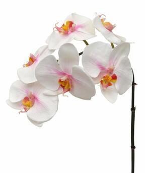 Konstgjord gren av Orchid rosa-vit 55 cm
