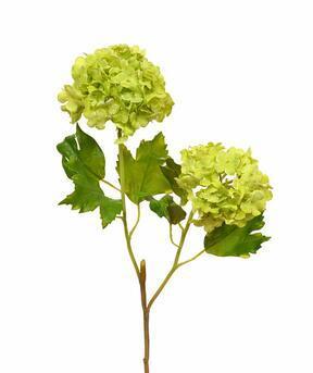Konstgjord gren Viburnum vanlig 55 cm