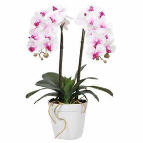 Konstgjord orkidé 43 cm