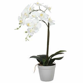 Konstgjord orkidé vit 65 cm