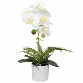 Konstgjord orkidévit med ormbunke 37 cm