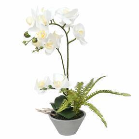 Konstgjord orkidévit med ormbunke 43 cm