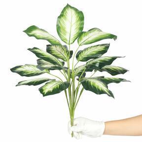 Konstgjord växt Dífenbachia vit 50 cm