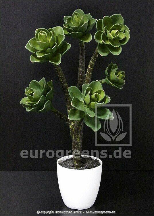 Konstgjord växt Eševéria 55 cm