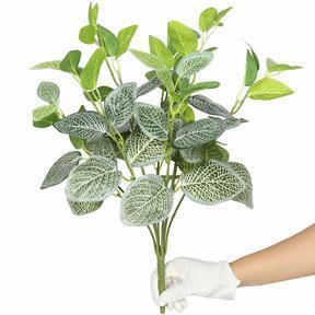 Konstgjord växt Fitónia vit 45 cm