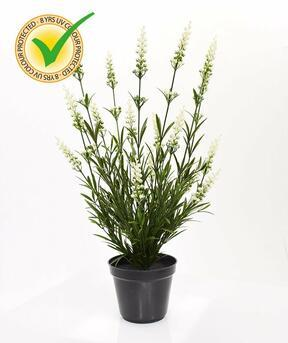 Konstgjord växt Lavendelvit 50 cm