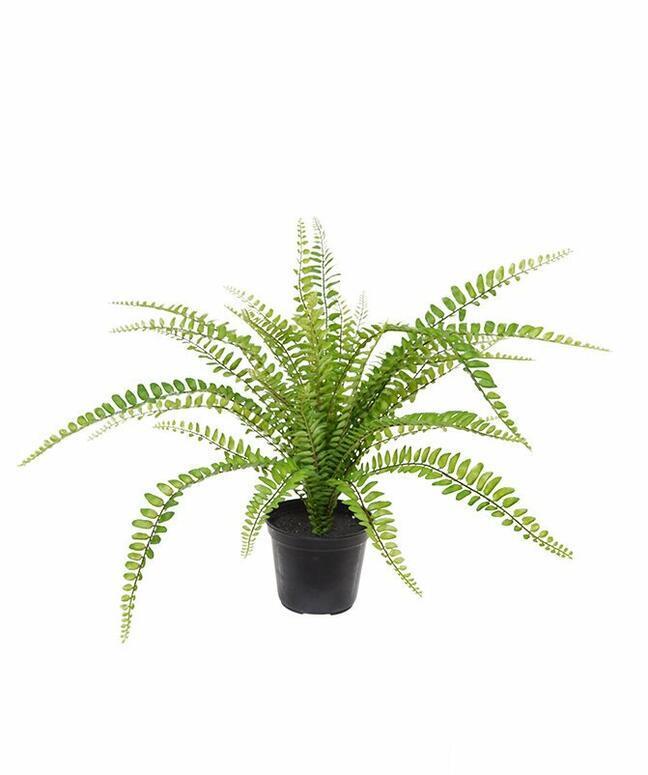 Konstgjord växt Mjälte 45 cm