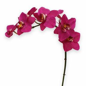 Konstgjord växt Orkidé lila 80 cm
